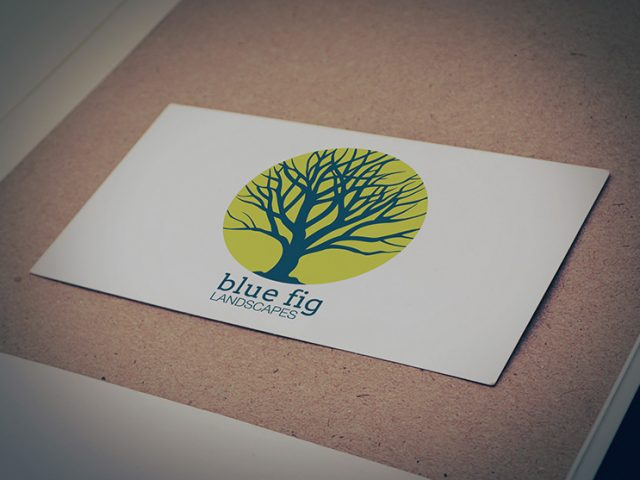 Blue Fig Logo Design